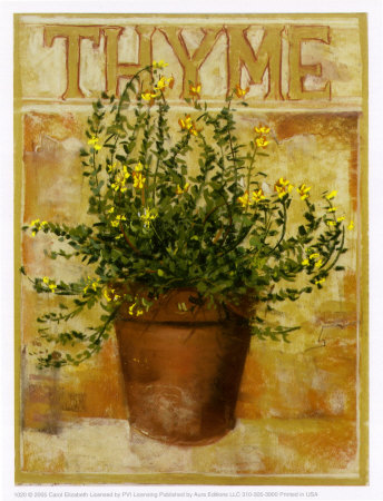 Thyme