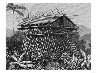 "House in the Arfak Village of Memiwa, New Guinea, from ""The History of Mankind,"" by Prof. Friedrich"