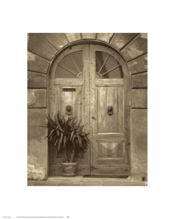 Grande Villa Entrance I Art Print
