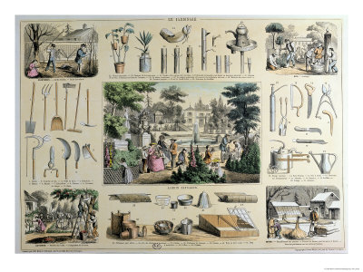 Educational Depiction of Gardening