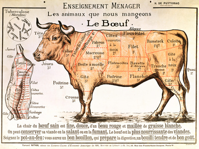 Buy Beef: Diagram Depicting the Different Cuts of Meat at AllPosters.com