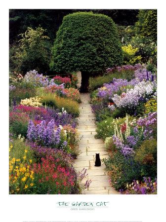 The Garden Cat