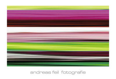 Fotografie II - Art Print