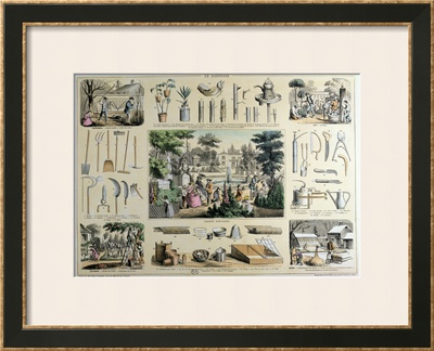 Educational Depiction of Gardening Framed Art Print