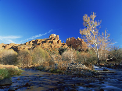 Oak Creek Running Before Cathedral Rocks, Red Rock Crossing, Sedona, Arizona, USA