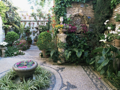 Patio in Private House During Annual Patio Competition, Cordoba, Andalucia, Spain