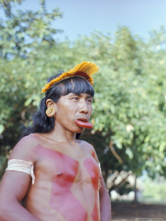 Suya Indian Man with Lip Plate, Xingu, Brazil, South America Posters