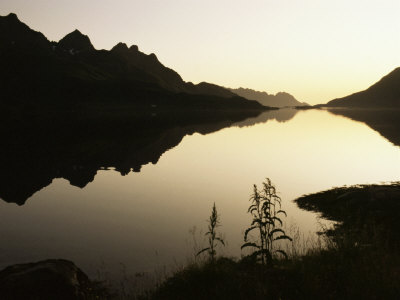 Midnight Sun and Calm Reflections ...
