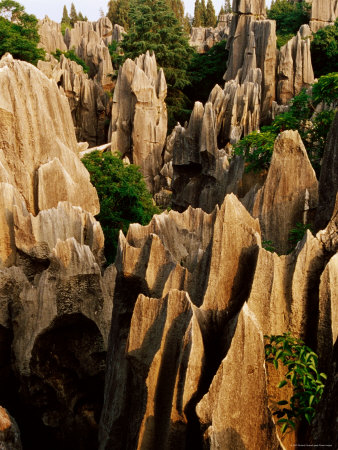 Limestone Karst Formations in Stone Forest, Shi Lin, Yunnan, China