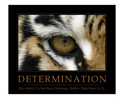 Determination - Eye of the Tiger