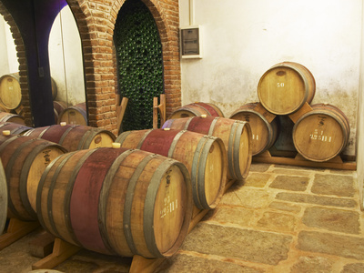 Barrel Aging Cellar, Vinedos Y Bodega Filgueira Winery, Cuchilla Verde