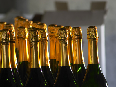 Bottles of Sparkling Wine, Bodega Carlos Pizzorno Winery, Canelon Chico, Canelones, Uruguay