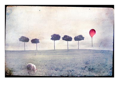Buy Lamb by Row of Trees and Red Balloon at AllPosters.com