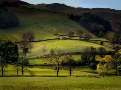Yorkshire Dales Spring