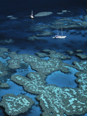 Great Barrier Reef, Queensland ...