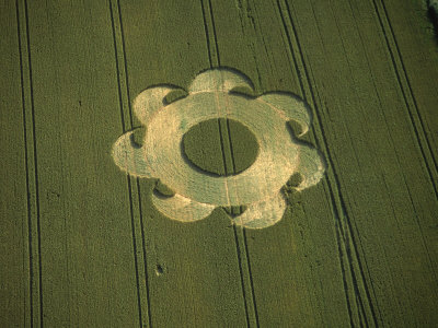 Crop Circle, Danebury, Hampshire, England