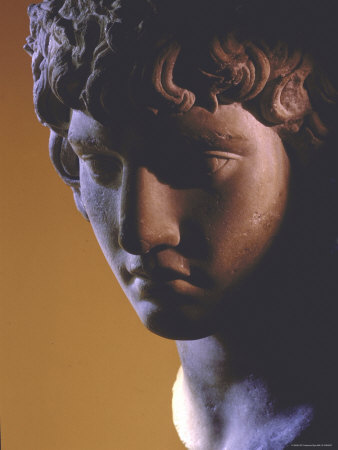 Head of Antinous, Favorite of Emperor Hadrian