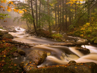 Flowing Streams Along the Appalachian Trail, East Arlington, Vermont, USA