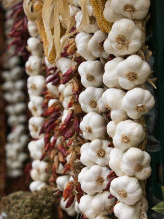 Garlic, Ischia Ponte, Ischia, Bay of Naples, Campania, Italy