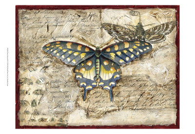 Poetic Butterfly II