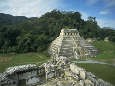 Mayan Ruins and Trees in Palenque, Mexico Posters