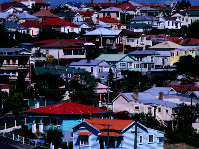 Overhead of Houses in Auckland, Auckland, New Zealand