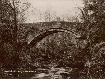 Linnolds Bridge Hexham Northumberland, a Fine Single-Arch Stone Bridge