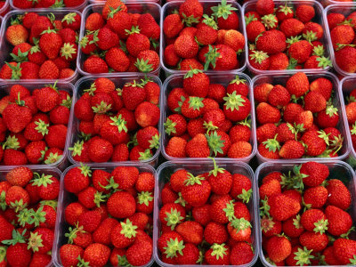 Strawberries for Sale, Bergen, Norway