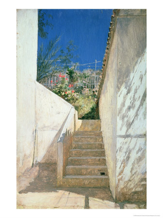 Steps in a Garden, Algeria, 1883
