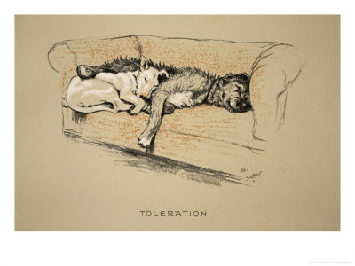 Toleration, 1930, 1st Edition of Sleeping Partners