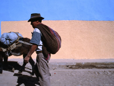 Local Man and Donkey in Cabanaconde at the Western End of the Colca Canyon, Arequipa, Peru