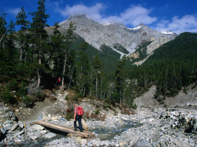 Hiker Crossing Wooden Bridge Over Stream in Val Chavagl, Piz Dal Fuorn, Switzerland