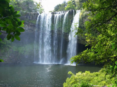 Rainbow Falls, Kerikeri, Northland, New Zealand