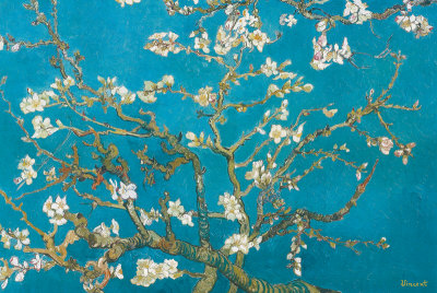 Almond Branches in Bloom, San Remy, c.1890 Posters