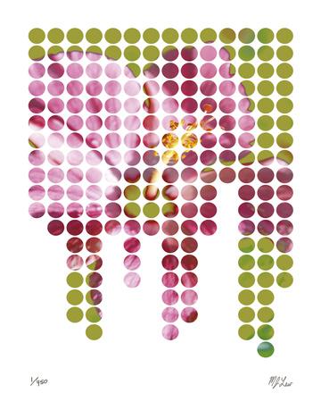 Flower Mosaic II - Giclee Print