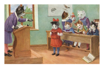 Cats in School