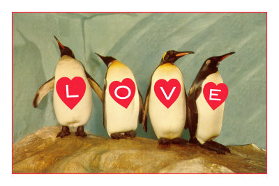 Four Emperor Penguins, LOVE