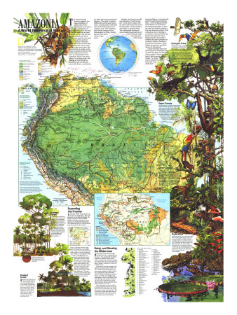 Amazonia, A World Resource At Risk Map 1992