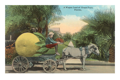 Giant Grapefruit on Cart