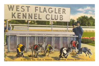 Greyhound Track, Flagler, Florida