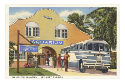 Aquarium, Key West, Florida