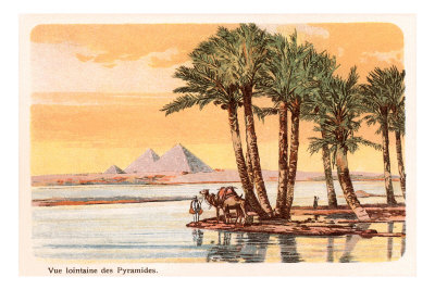 Pyramids from across the Nile, Palms, Camels, Egypt