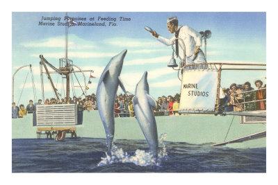 Jumping Porpoises, Marineland, Florida
