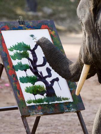 Elephant Painting, Chiang Mai ...
