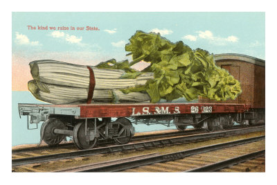 Giant Celery on Flatbed