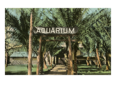 Waikiki Aquarium, Honolulu, Hawaii