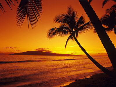 Colorful Sunset in a Tropical ...