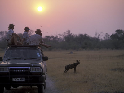 Tourists on Safari Watch, Khwai River, Moremi Game Reserve, Botswana