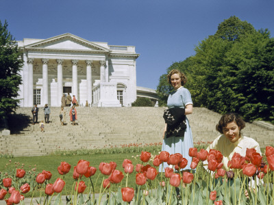 Women Admire Tulips Blooming Near Tomb of the Unknown Soldier