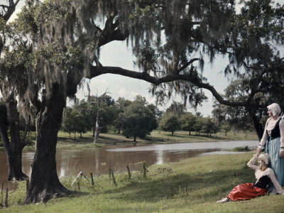 Two Women Rest Beneath a Tree, Beside the Bayou Teche Waters Photographic Print